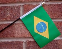 HAND WAVING FLAG (SMALL) - Brazil
